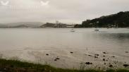 Port Otago Ltd. Port Chalmers, Dunedin, NZ