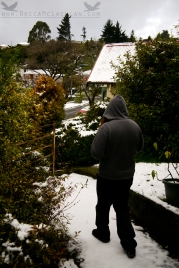 Grae walking in the snow!