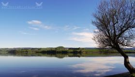 Lake Waihola, New Zealand.