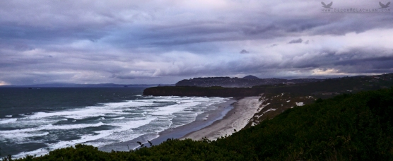 Tomahawk Beach, Ocean Grove, Dunedin, New Zealand.