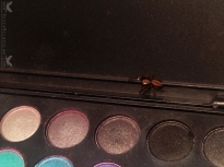Spider in my Eye Shadow Palette. Taken with iPhone 5.