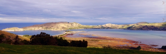 View of Aramoana from Heywood Point, Dunedin, New Zealand.