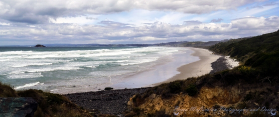 Day 5 - 05/01/17 - Blackhead Beach